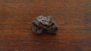 Darwin Glass Meteorite 3 grams $15 click here for more information